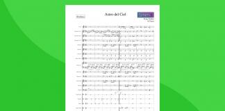 arrangiamento per orchestra scolastica di astro del ciel