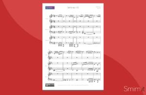 Arrangiamento per pianoforte a 6 mani sulla Sinfonia n.5 di Beethoven