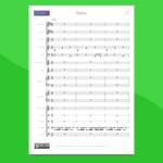 Bolero di Ravel - partitura per orchestra scolastica