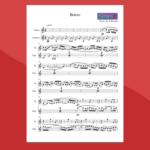 Bolero di Ravel - Spartito gratis per flauto e chitarra
