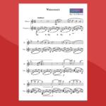 Enya - Watermark - spartito gratis per flauto e vibrafono
