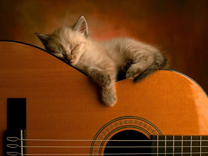 le proprietà benefiche della musica per rilassare e addormentare