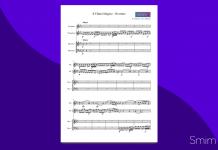 Ouverture dal Flauto Magico | Spartito gratis per ensemble di percussioni