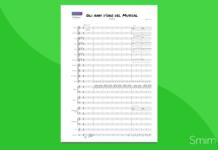 gli anni d'oro del musical (fichera) [orchestra]