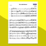 the entertainer   spartito gratis per ensemble di flauti