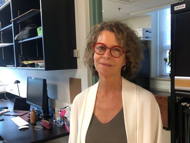 la dottoressa peretz e le sue ricerche